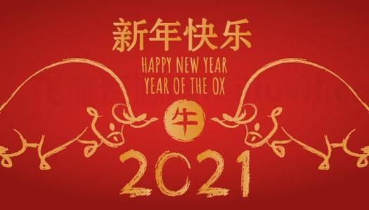飞流资源网祝大家新年快乐插图
